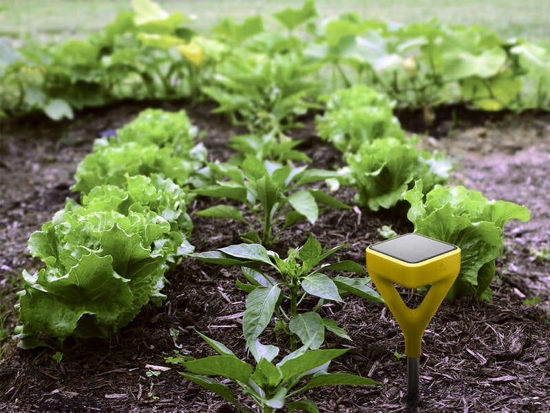 Founded by soil scientist Jason Aramburu and designed in conjunction with sustainability advocate, Yves Behar, the Edyn Smart Garden System is the product of research in farming communities in Panama and Kenya.