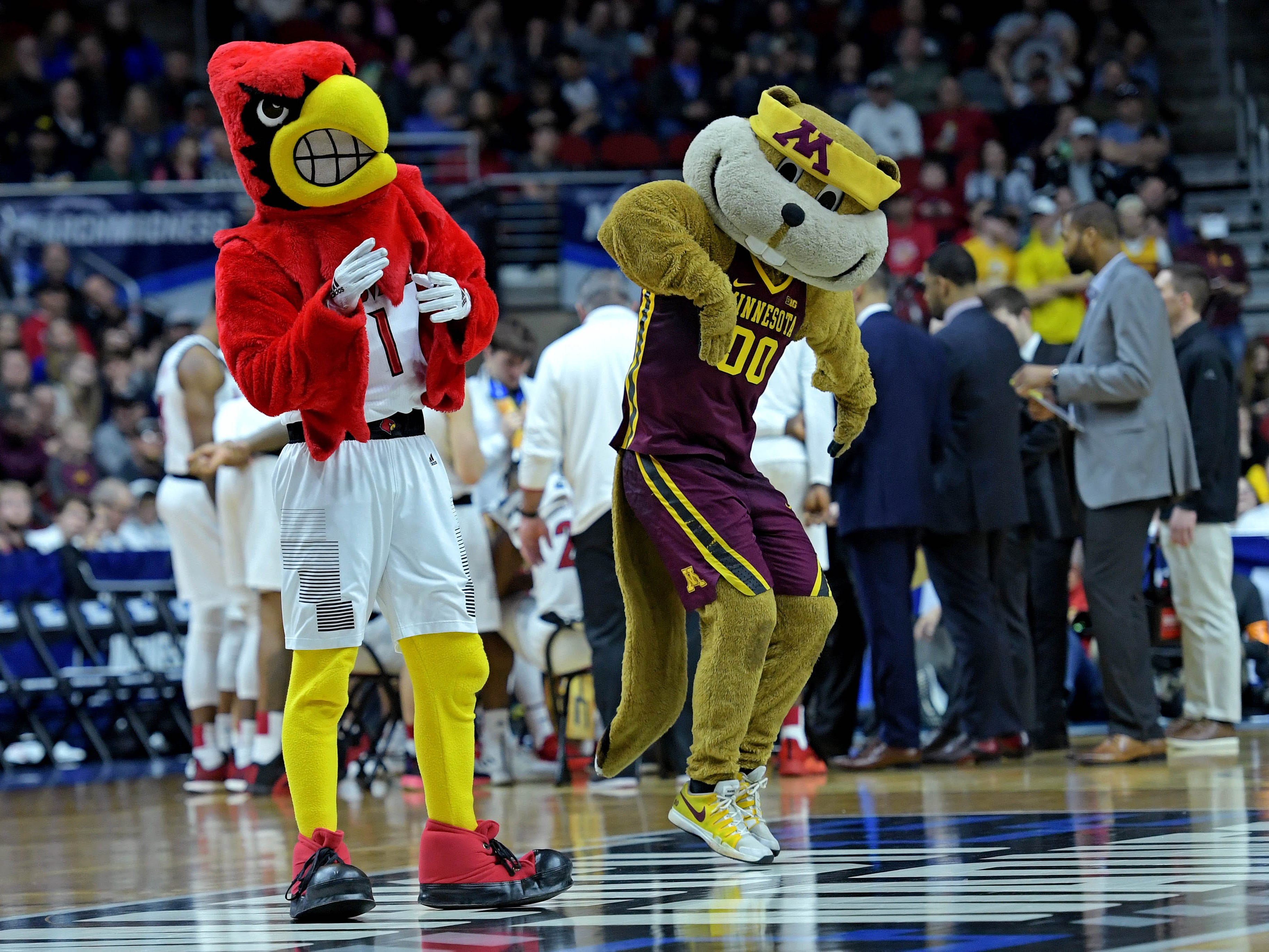 First round: The Louisville Cardinals mascot and the Minnesota Golden Gophers mascot dance on the court.