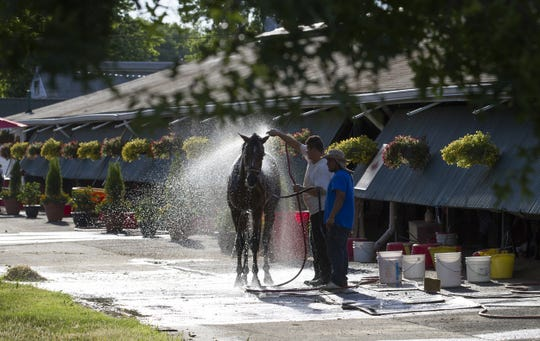 A horse gets a shower on Monmouth Park's backstretch, which track officials hope will be closer to capacity this summer thanks to an influx of purse money.