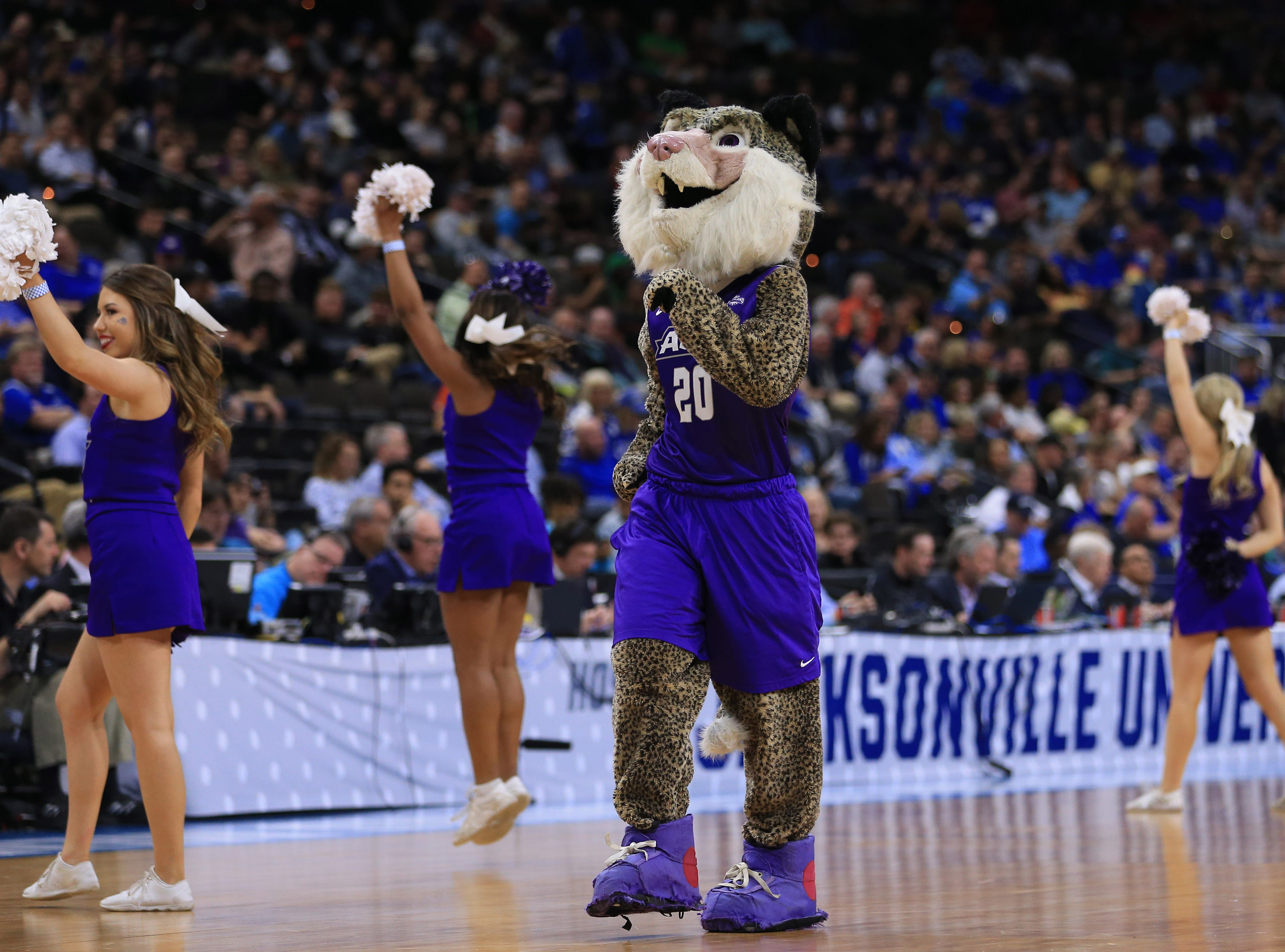 Mar 21, 2019; Jacksonville, FL, USA; The Abilene Christian Wildcats mascot and cheerleaders dance on the court during a stoppage in play against the Kentucky Wildcats the first half against the Kentucky Wildcats in the first round of the 2019 NCAA Tournament at Jacksonville Veterans Memorial Arena. Mandatory Credit: Matt Stamey-USA TODAY Sports