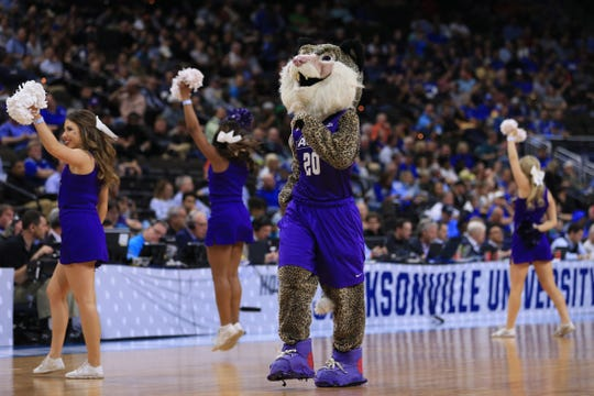 The Abilene Christian Wildcats mascot and cheerleaders dance on the court during a stoppage in play against the Kentucky Wildcats the first half in the first round of the 2019 NCAA Tournament at Jacksonville Veterans Memorial Arena.