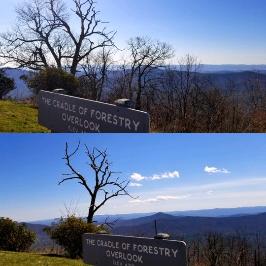 Blue Ridge Parkway maintenance staff are restoring long-range views at overgrown overlooks along the parkway in preparation for spring openings. This is a before-and-after look at the Cradle of Forestry Overlook at Milepost 411.