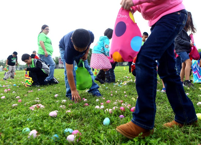 Students from Hicks Elementary search for easter eggs during the 2nd annual Eggstravaganza celebration Thursday April 2, 2015 in Corpus Christi.
