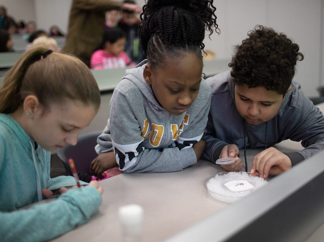 Fruit flies create buzz for Moore Magnet students at APSU