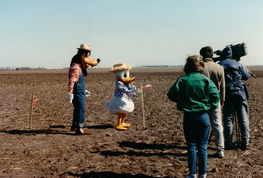Goofy and Donald Duck stand in a field near Dougherty, Iowa, in the spring of 1988 as the Pitzenberger family begins to plant corn and oats in an effort to show a silhouette of Mickey Mouse. BVU digital media students have created a documentary about the project,