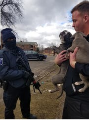 Pitbull puppies rescued from a home in Highland Park.