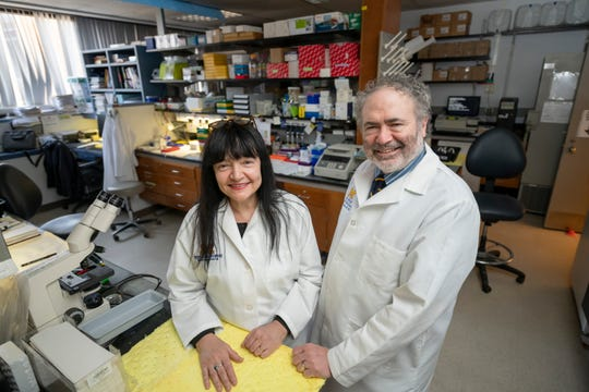 Professors Maria Castro, left, and Pedro Lowenstein stand in the Castro-Lowenstein Laboratory at the University of Michigan School of Medicine in Ann Arbor on March 12.
