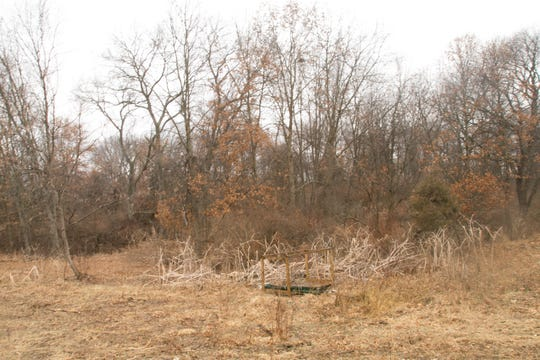 Plans for a wooded area along the drive to the fields of newly planted fruit trees on the Schell Farm shown Wednesday, March 20, 2019 involve development of a haunted forest.