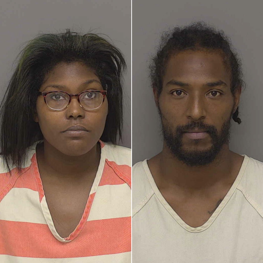Kinnetta Collins and Quintin Botley were sentenced in Livingston County Circuit Court Judge Michael Hatty's courtroom Thursday morning.