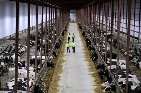 A case headed to the Supreme Court involves whether the Department of Natural Resources can impose certain requirements on a large dairy farm in Kewaunee County. The Kinnard dairy farm, which is involved in the case, milks thousands of cows.
