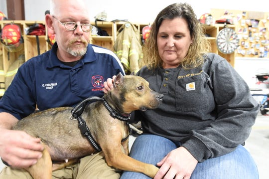 Glenn Chapman (left) and Darla Hulen sit Friday with Fawkes, the female pit bull rescued from a home where suspected abuse and neglect occurred. Since Chapman took the dog in, she's gained seven pounds over the course of nine days.