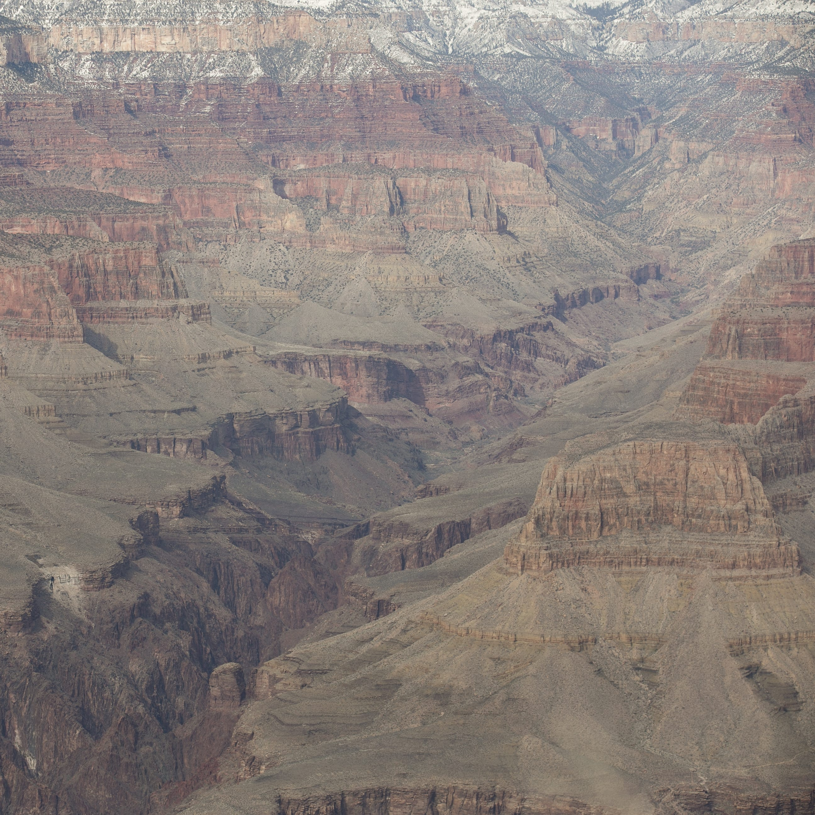 Another man is dead after falling at the Grand Canyon