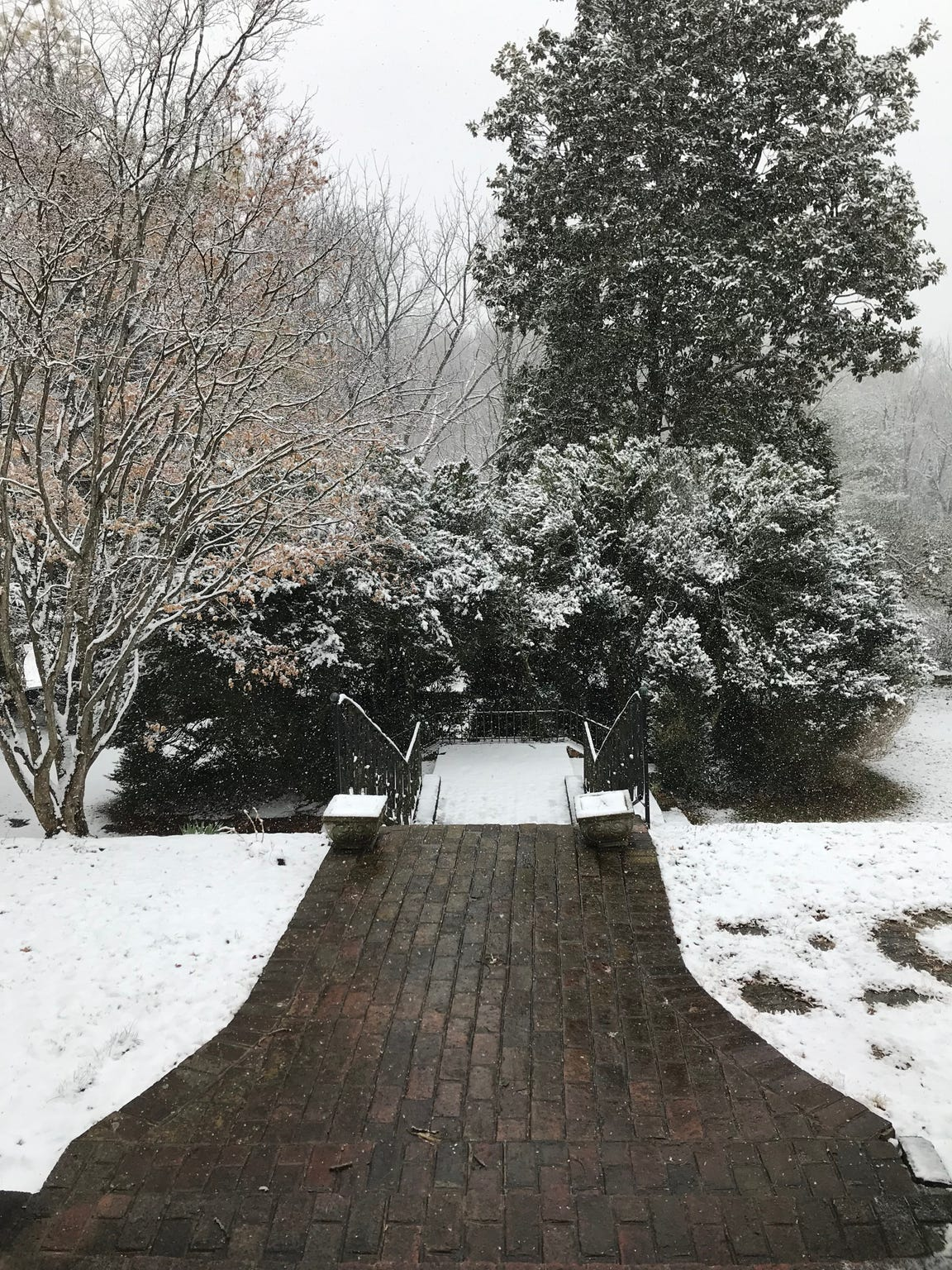 The stairs leading up to Dr. Robert Kyler's home in Staunton. Photographed on Friday, March 8, 2019.