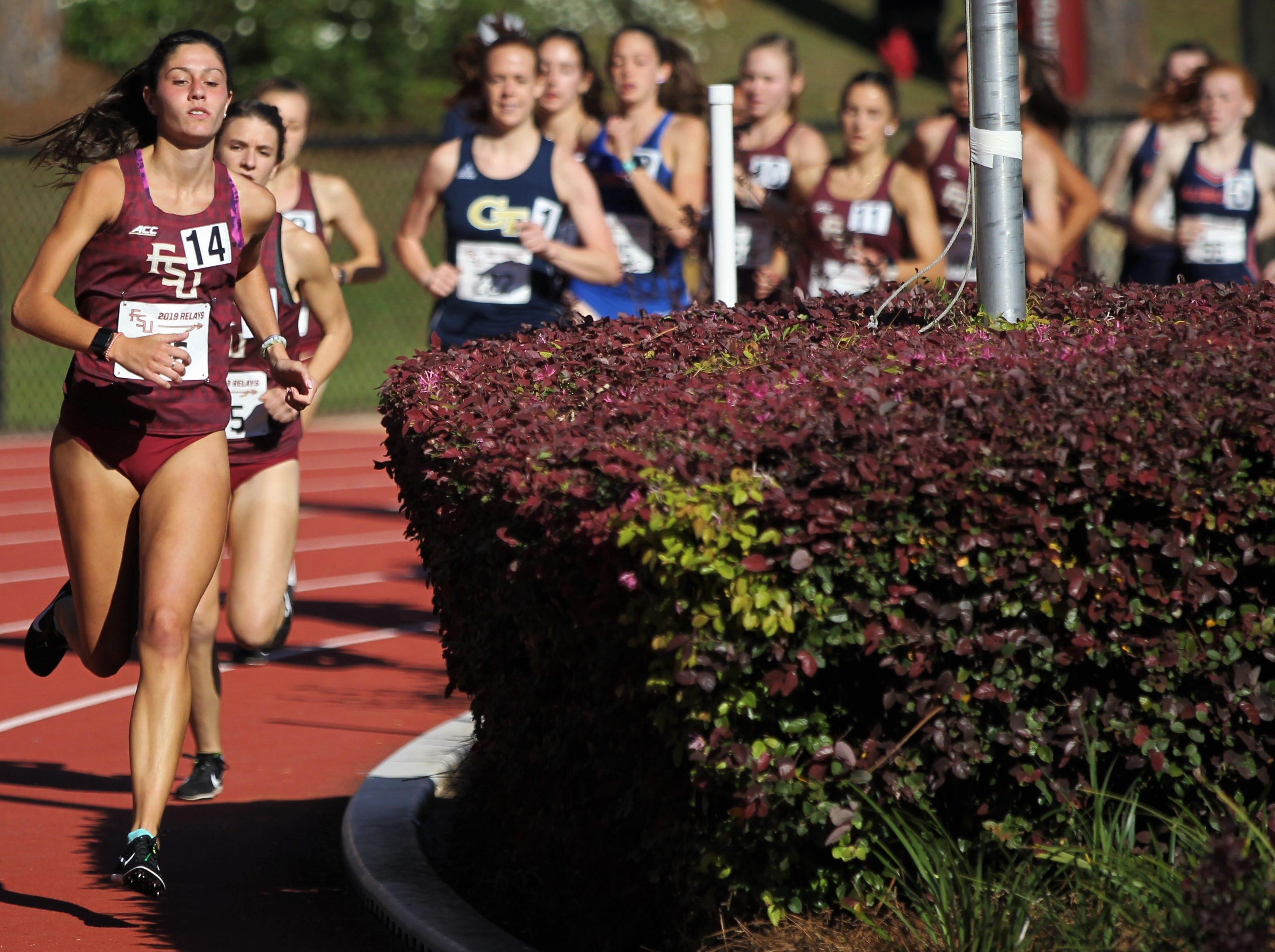 Florida State races in the 1500-meter run during Friday's college portion of the FSU Relays at Mike Long Track on March 22, 2019.