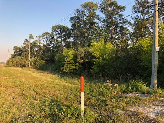 A 12-acre parcel on County Road 512 west of I-95 in Fellsmere could be the new home of the Tractor Supply Company.