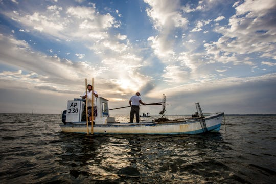 Florida State University's marine science lab will use $8 million from the 2010 BP Deepwater Horizon oil spill settlement to rebuild Apalachicola Bay's oyster farming industry.
