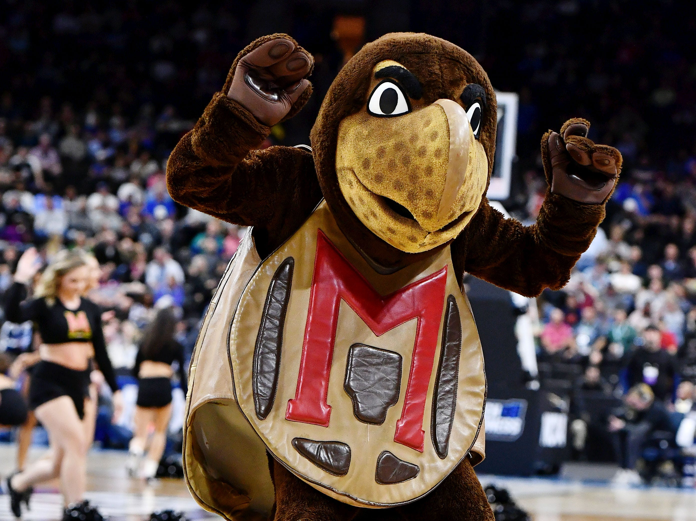 Mar 23, 2019; Jacksonville, FL, USA; The Maryland Terrapins mascot dances on the court during a timeout during the first half of their game against the LSU Tigers in the second round of the 2019 NCAA Tournament at Jacksonville Veterans Memorial Arena. Mandatory Credit: John David Mercer-USA TODAY Sports
