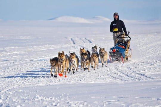 Matthew Failor in the 2019 Iditarod.