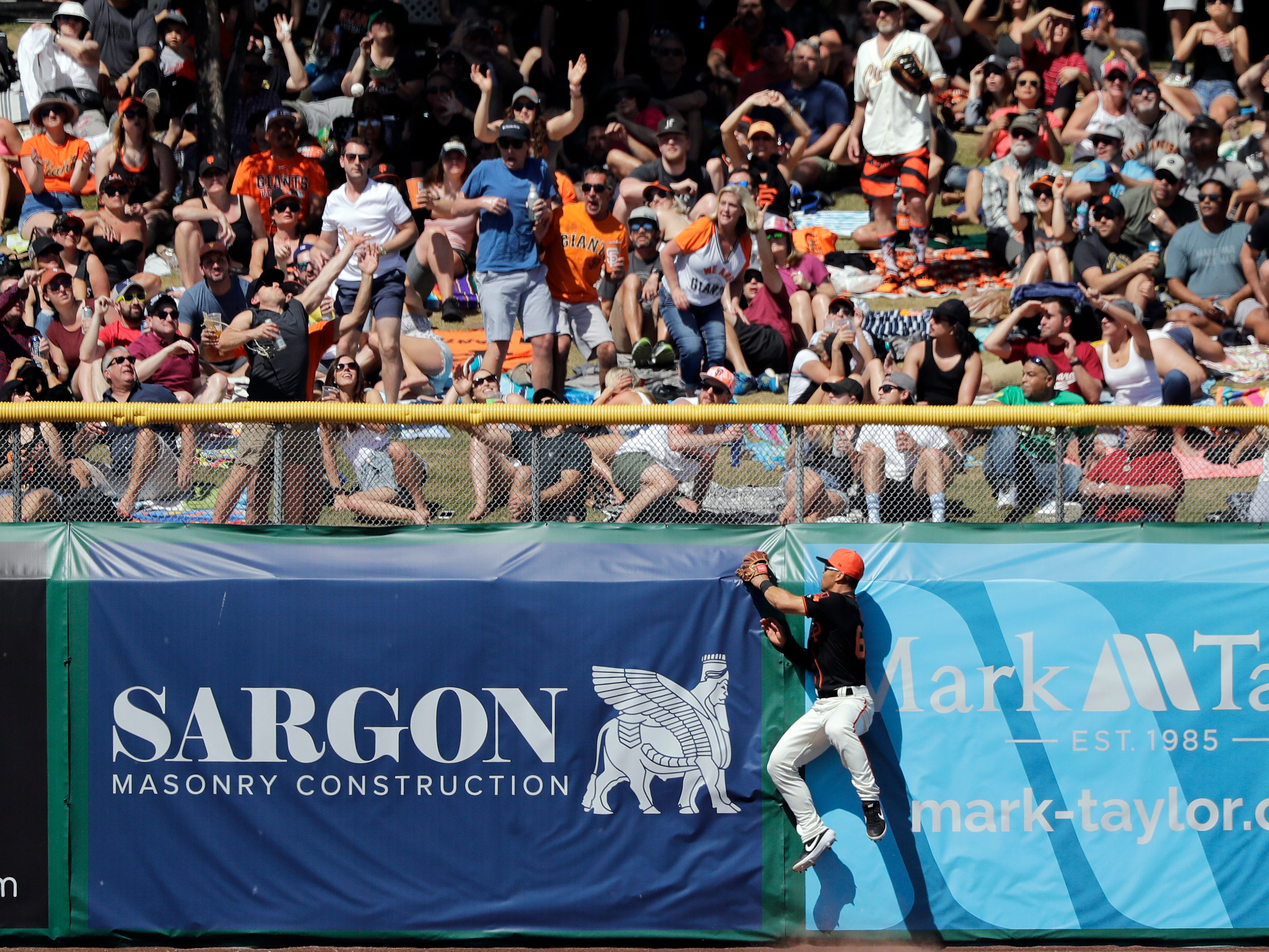San Francisco Giants left fielder Connor Joe leaps at the wall as fans reach for the home run of Arizona Diamondbacks' David Peralta during the third inning of a spring training baseball game Saturday, March 23, 2019, in Scottsdale, Ariz.
