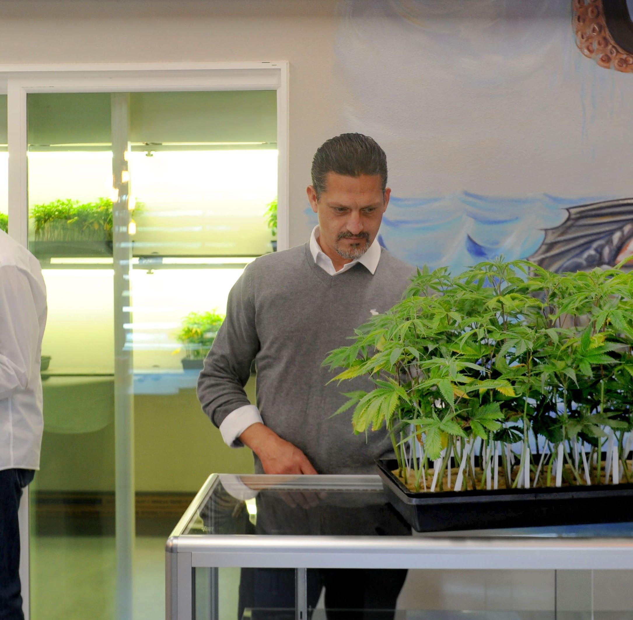 Port Hueneme's marijuana industry has commercial property values blazing