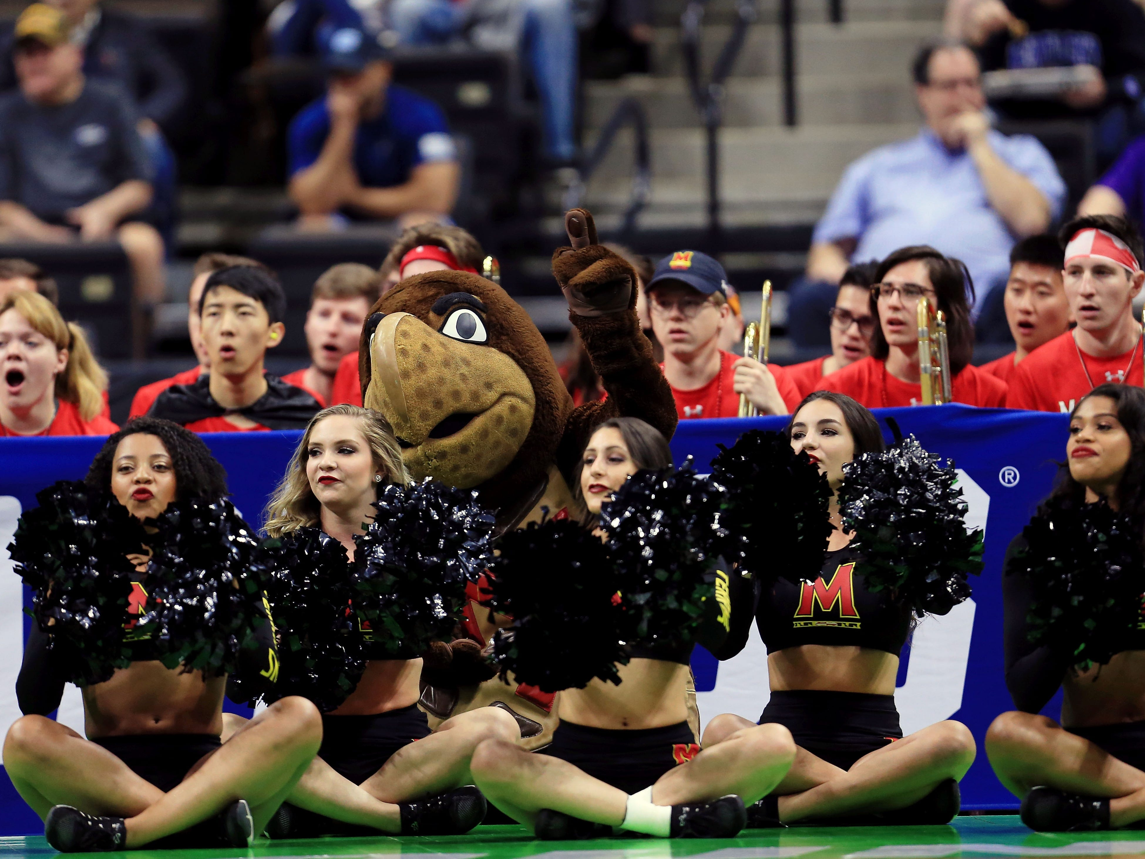 Round of 32: The Maryland Terrapins mascot sits with the cheerleaders during the game against LSU.