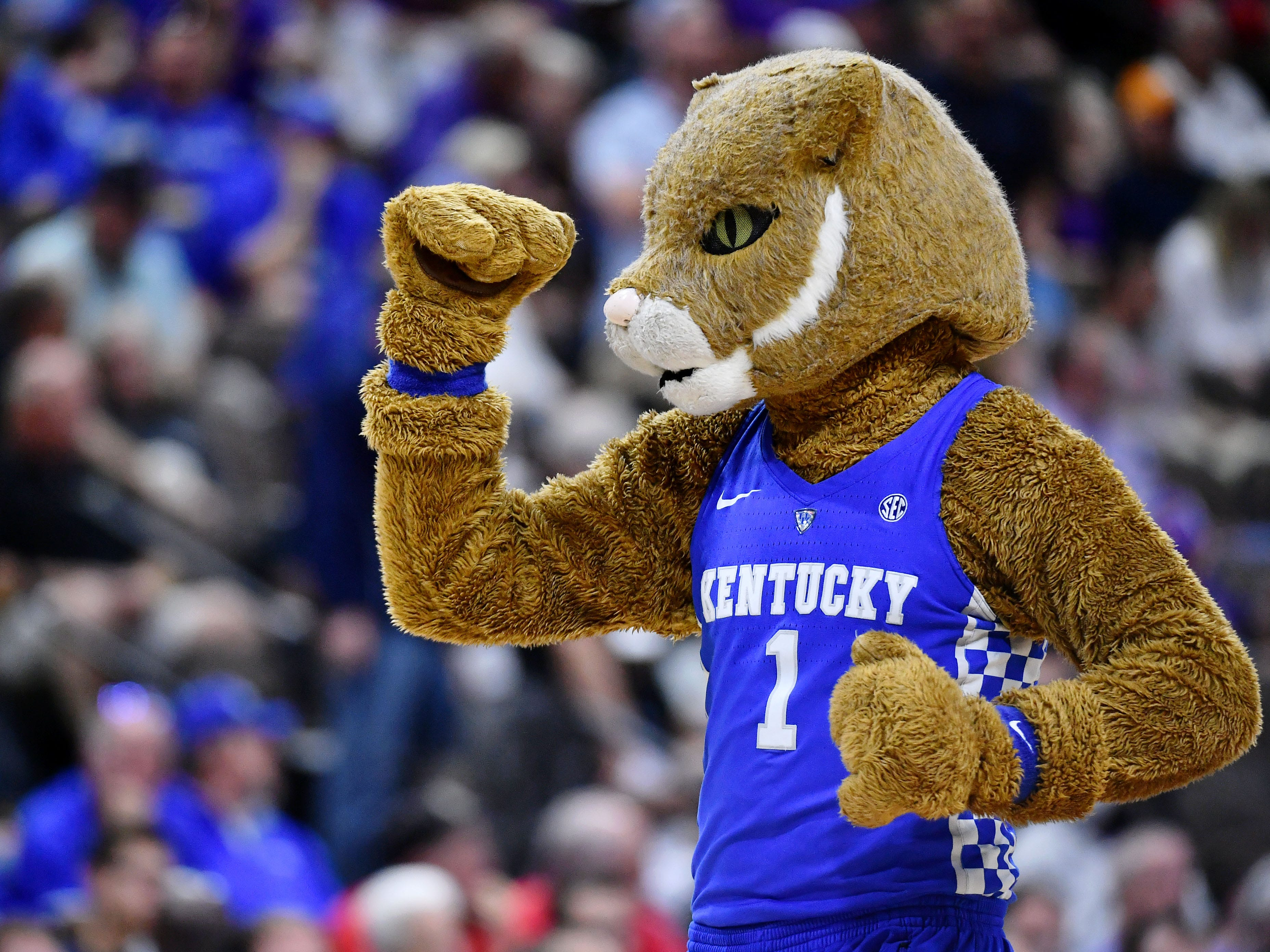 Round of 32: The Kentucky Wildcats mascot gestures during the game against the Wofford Terriers.