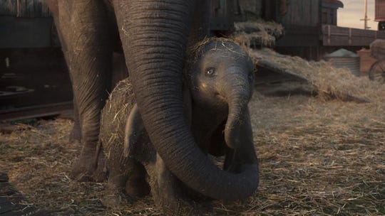 Dumbo is taken away from his mother and forced to join the circus.