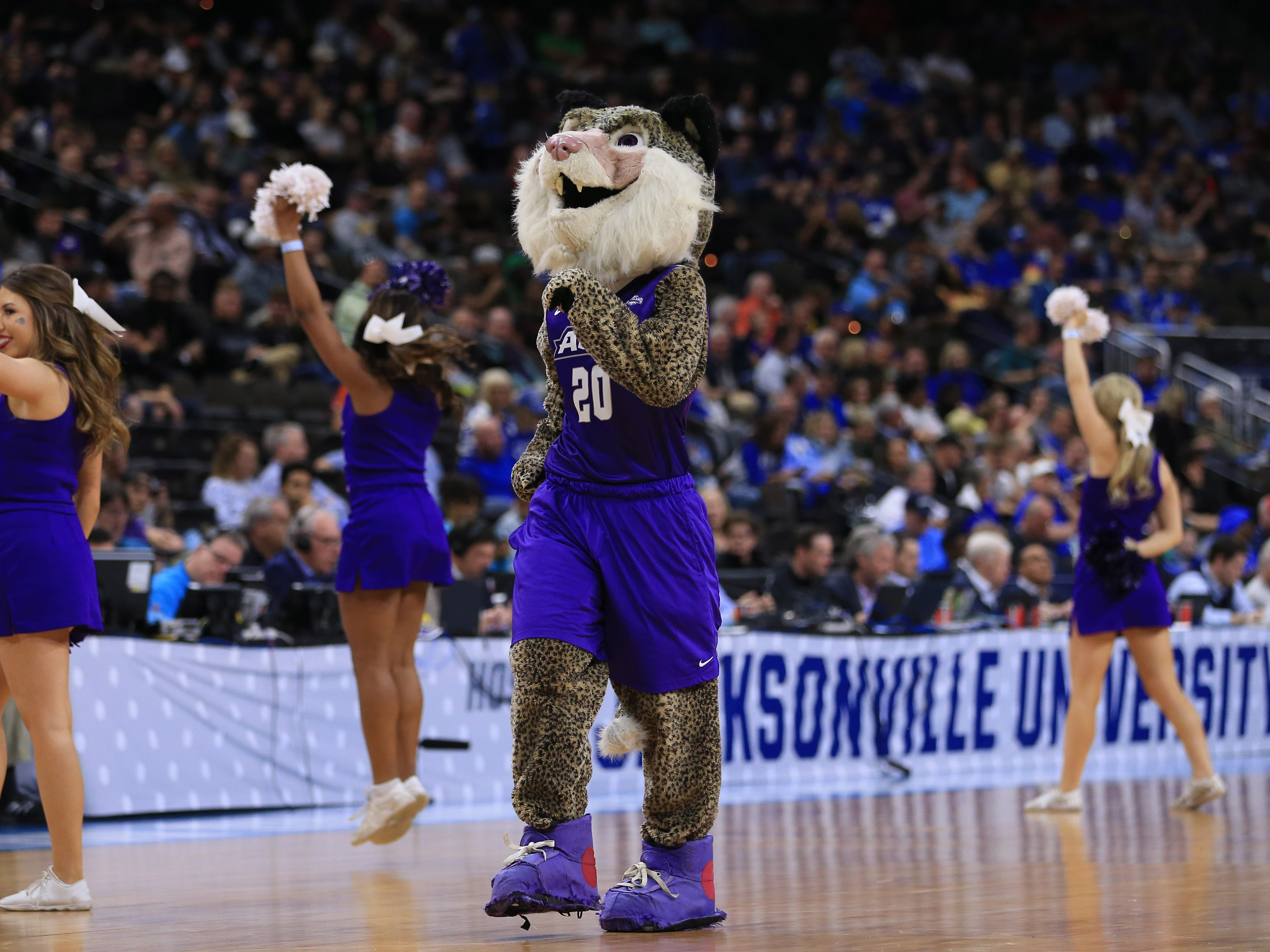 The Abilene Christian Wildcats mascot ... we're not sure what's going on here.