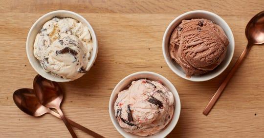 Hudsonville Ice Cream