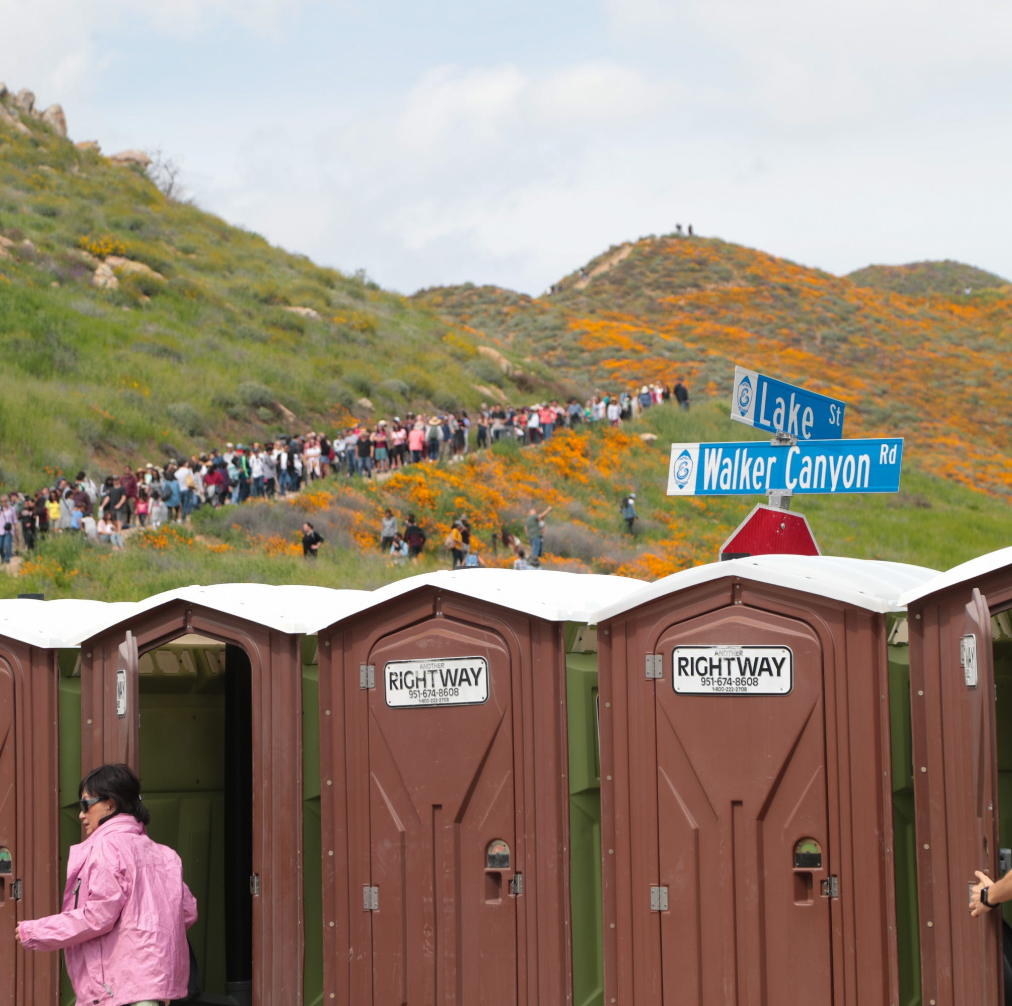 Want to see the poppy super bloom at Lake Elsinore? Brace yourself for large crowds and long lines