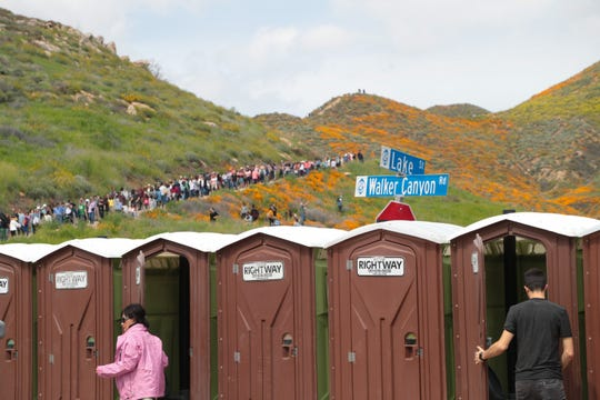 Porta potties are set up at the entrance to Walker Canyon, where thousands have gone to see the wildflower bloom, Lake Elsinore, Calif., March 23, 2019.