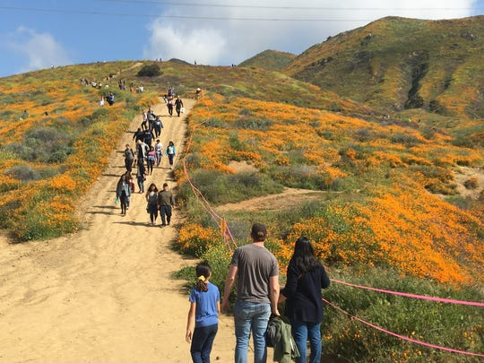 Visitors walk on a path in Lake Elsinore's Walker Canyon on March 24. They're among thousands who converged on the site to see poppies covering the hills.