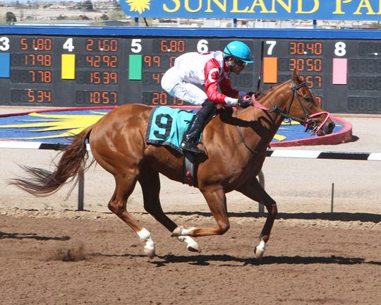 Sunscreen won the 1 and 1/16th miles New Mexico Breeders' Derby on Sunday at Sunland Park Racetrack & Casino.