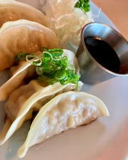 The gyoza at Naoki Japanese Cuisine in Palm Bay were among the best in the area.