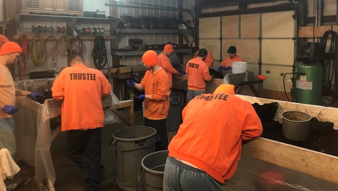 """Inmates at the Henderson County Detention Center work recently at the """"worm farm"""" that produces valuable fertilizer for the jail's yearly gardening program. The inmates are getting ready for spring planting."""