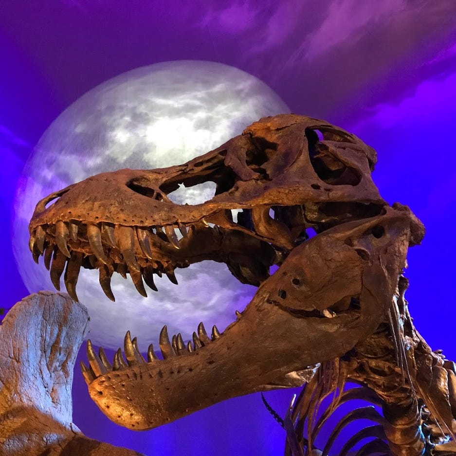 Children's Museum's Dinosphere to get big expansion as it funds dino dig