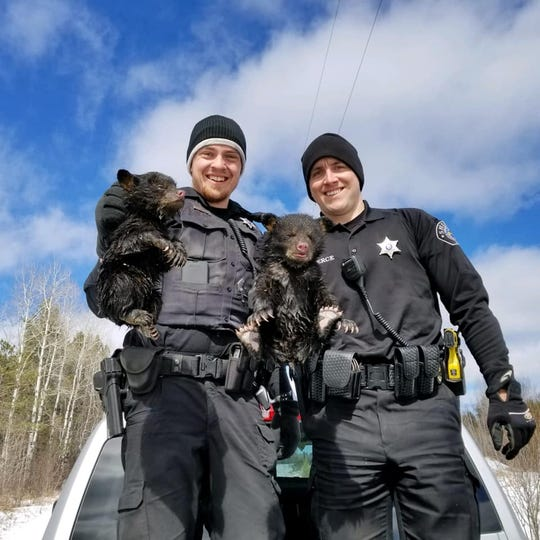 Ashland County Sheriff's Department deputies  Dylan Wegner (left) and Zach Pierce saved two bear cubs from a flooded den in northern Wisconsin.
