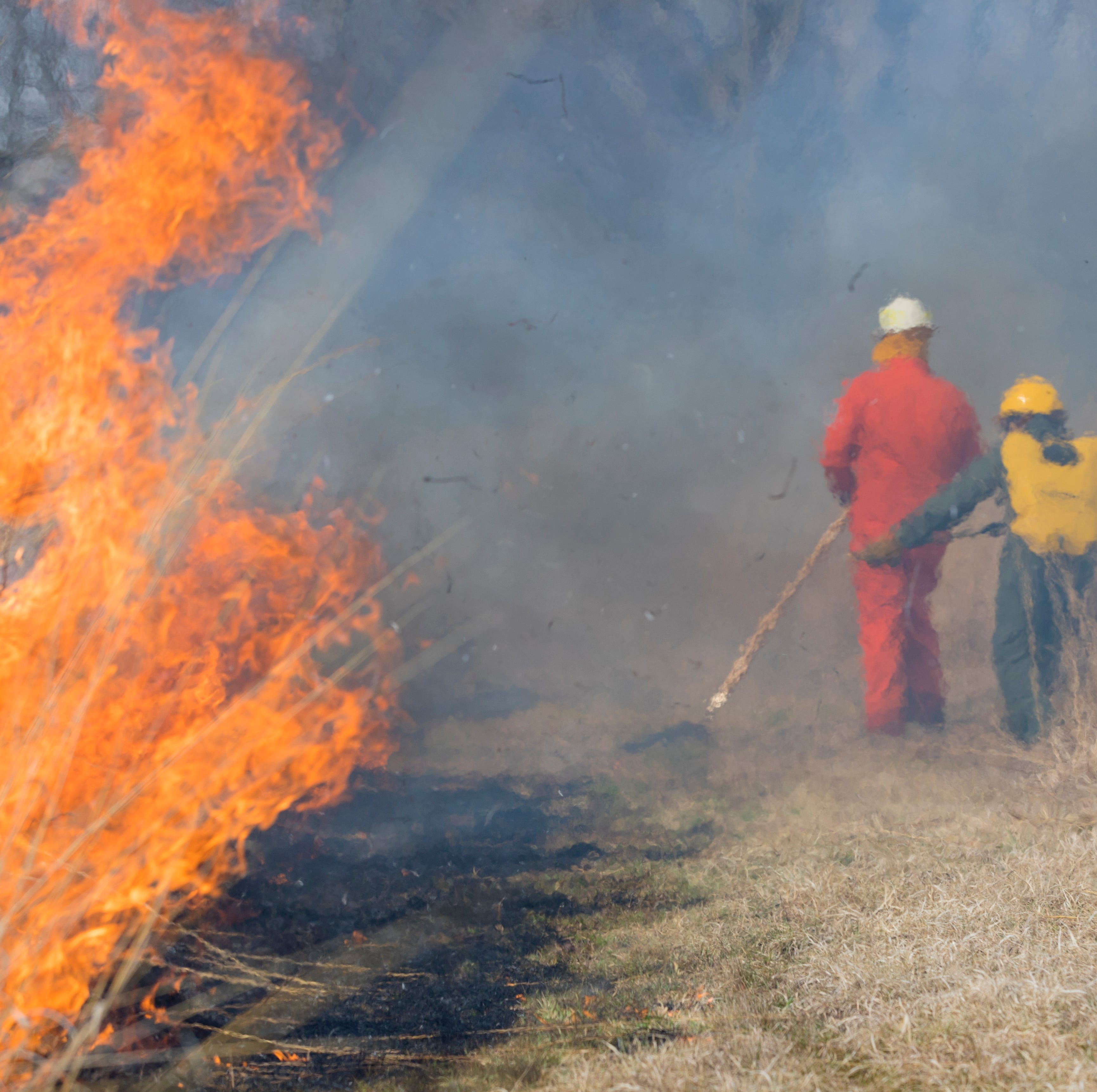 Controlled burn at Ball State University helps environment and educates students