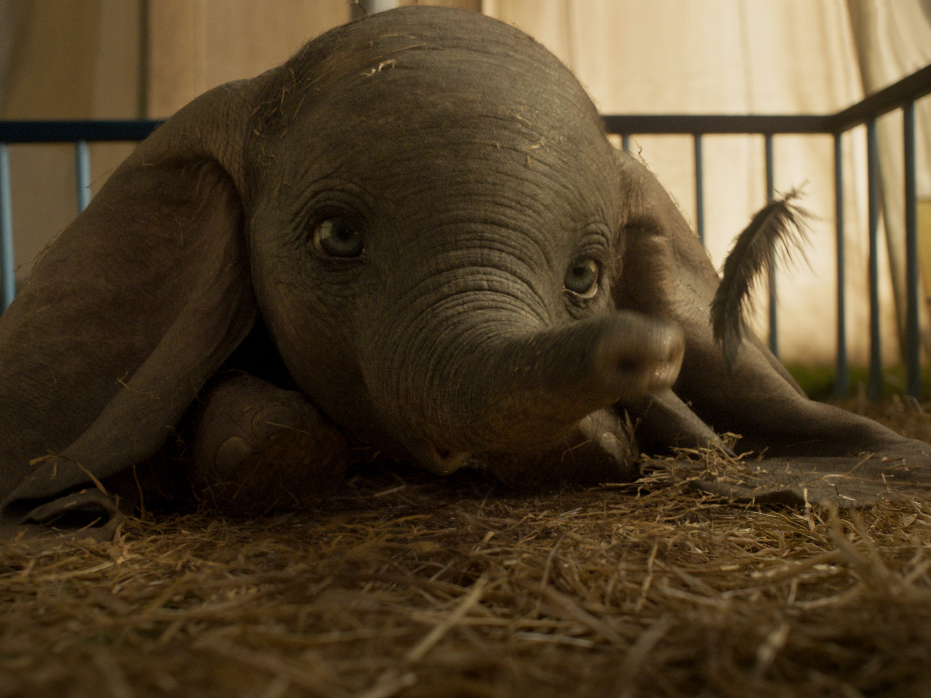 "In ""Dumbo,"" a newborn elephant with oversized ears make him a laughingstock in an already struggling circus."