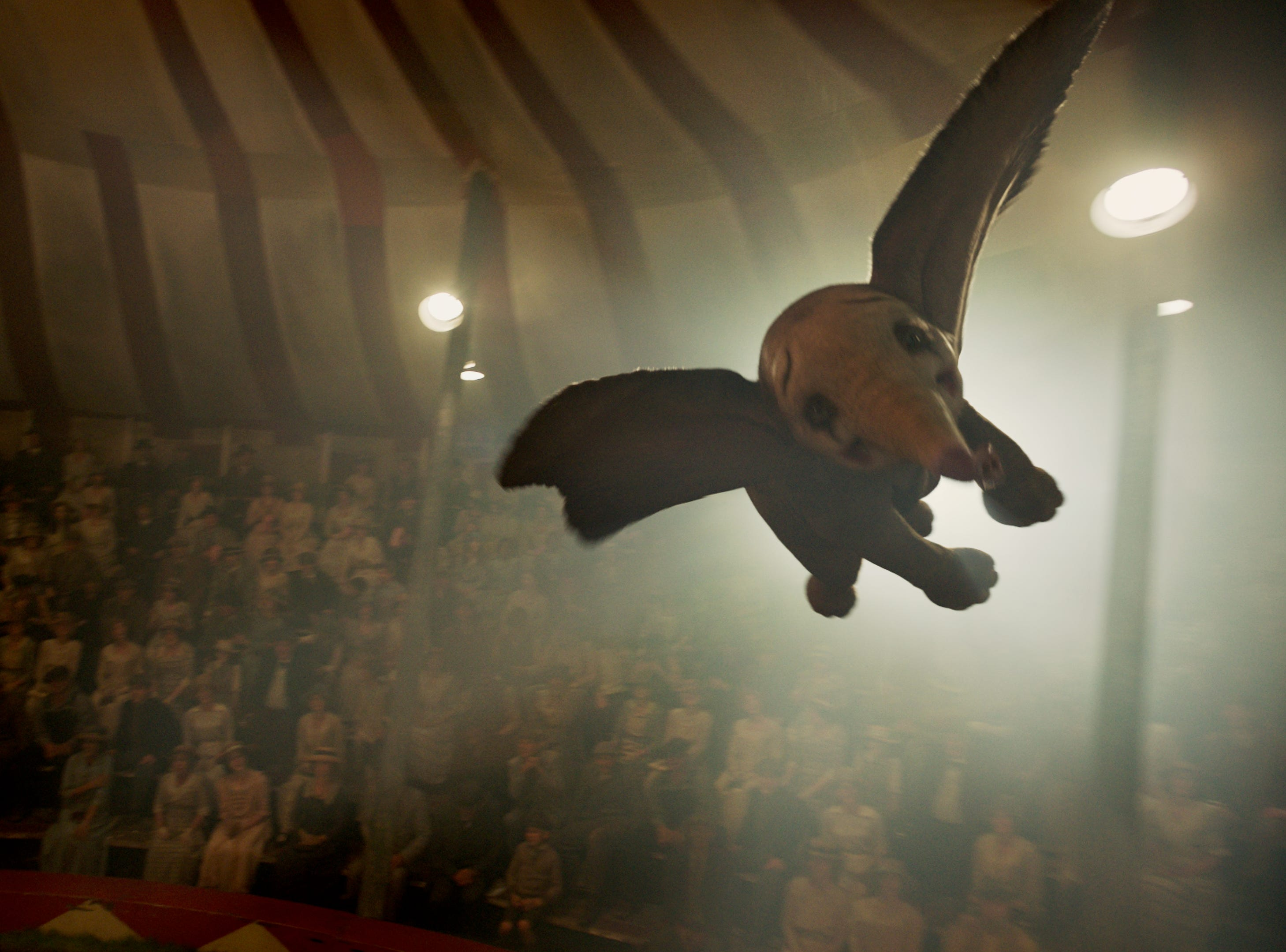 "In ""Dumbo,"" a newborn elephant discovers he can fly."