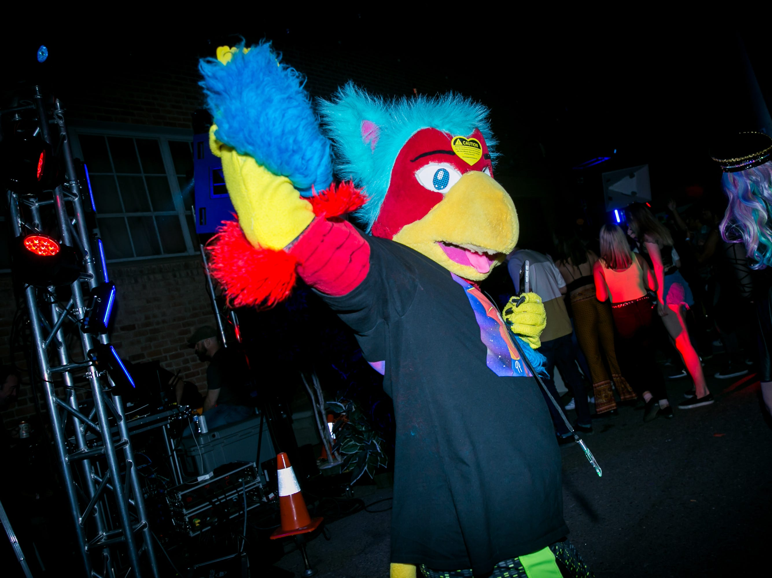 This bird was ready to party at the Full Moon Festival at the Pressroom on March 23, 2019.