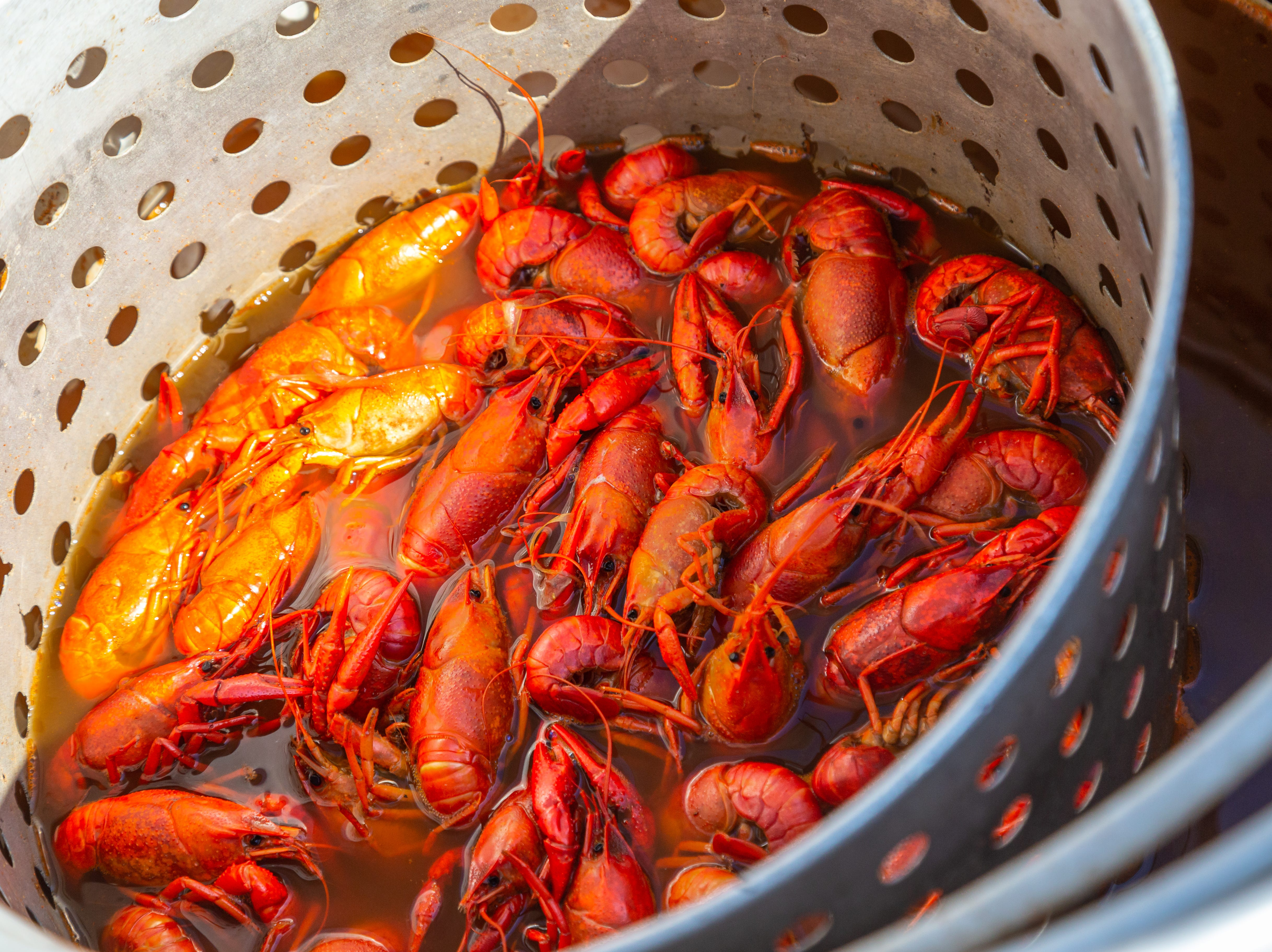 Crawfest 2019 was March 22-23, 2019 at Betty Virginia Park in Shreveport.