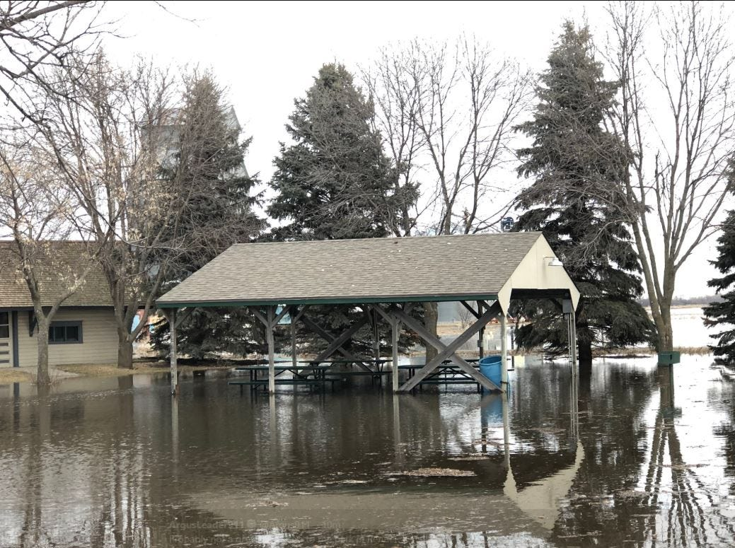 Flooding at Renner park on March 25, 2019.