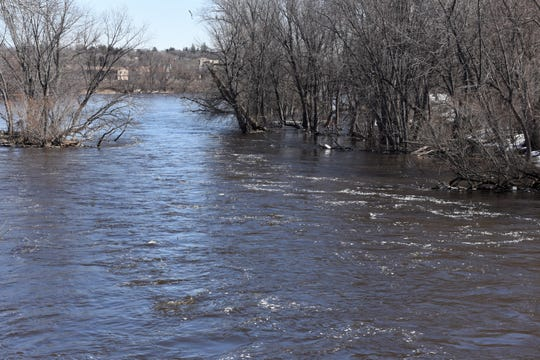 Trees along the shoreline where the Sauk River meets the Mississippi River were underwater Monday. The National Weather Service has issued a flood warning for the Mississippi River at St. Cloud starting Wednesday morning. Monday morning the river was at 8.6 feet. Flood stage is 9 feet.