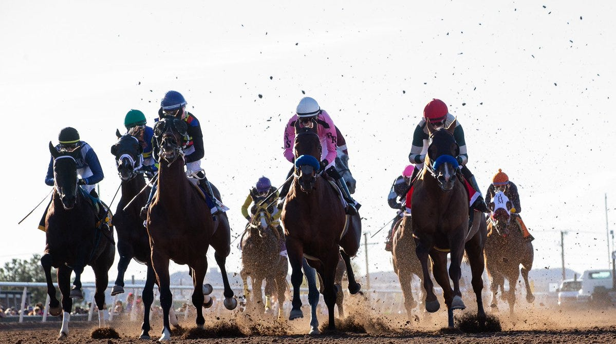 lay betting horses in texas