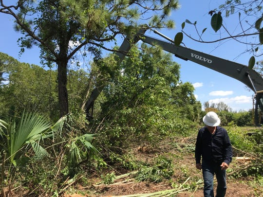 Contractor William Hodges walks the site of Mullock Creek clearing