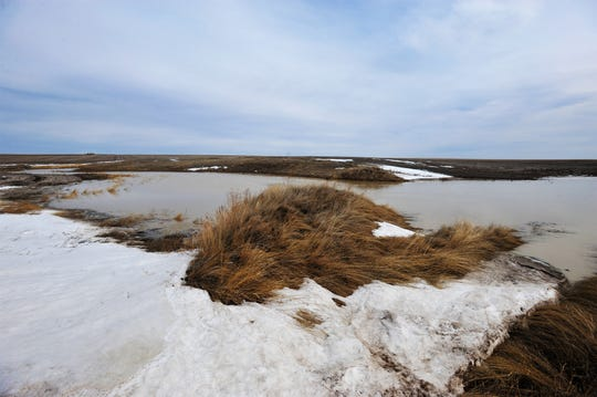 Spring snowmelt collects in drainages and low lying areas north of Great Falls Tuesday.  Minor flooding from early spring runoff is causing road closures in Chouteau County.