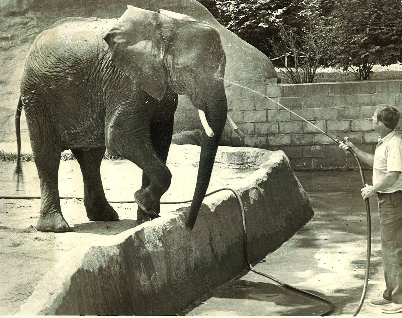 Tombi the elephant gets a little squirt from elephant keeper Earl Austin in 1987 at Lansing's Potter Park Zoo.