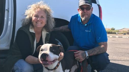 Arizona family reunites with dog thrown from car in Interstate 17 crash