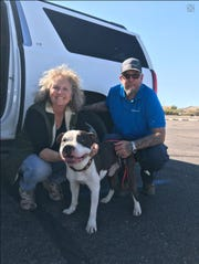 Dozer, a dog that was missing for two weeks after being ejected from a car during an accident, is found and returned to his owners.